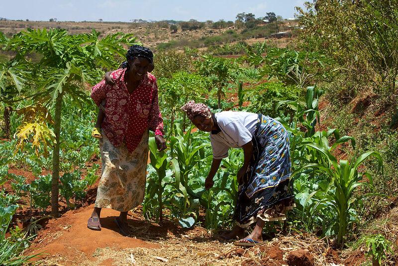 Frauen Aus Kenia